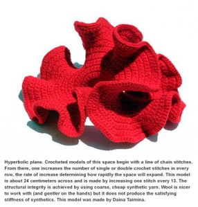 hypbolic crochet image from the Institute for Figuring