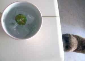 Limau Kasturi & Coconut Water