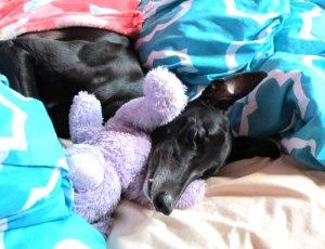 Bedtime now, mumma!