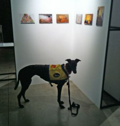 IMG_3030lucy@gallery