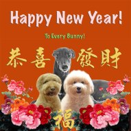 HappyNewYear-card-1-v3