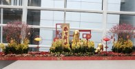 Welcoming the Year of the Dog at HK International Airport