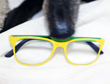 100T9812-yellow-spectacles